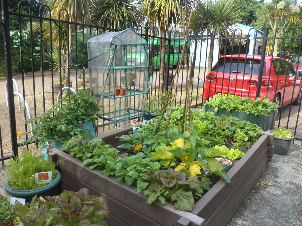 Watergate KS1 garden